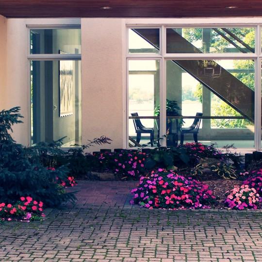 greatgoats flower beds